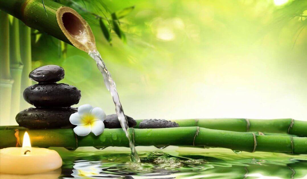 Purvakarma- organisma attīrīšanas prakse. LV